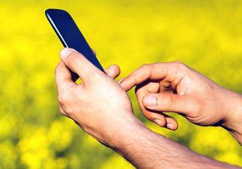 Hände, die in ei Smartphone tippen, im Hintergrund ein Rapsfeld